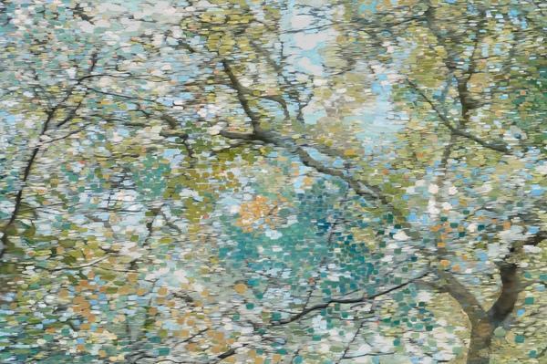"Wynne Hayakawa, ""Oak and Plum"""