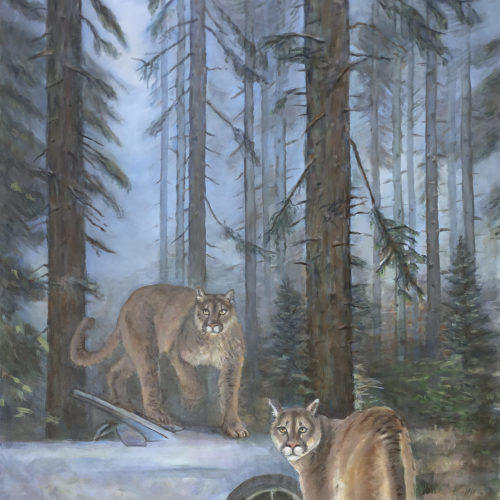Mountain Lions in Forest