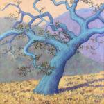 "Carmel Hilltop Oak  oil on canvas  20"" x 20"""