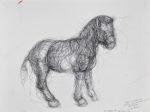 """Zebra I, Ball Point Pen on Paper, 9 x 12"""""""