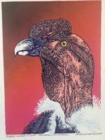 """James Gorman """"andean condor (red),"""" silk screen, 12""""x15"""""""