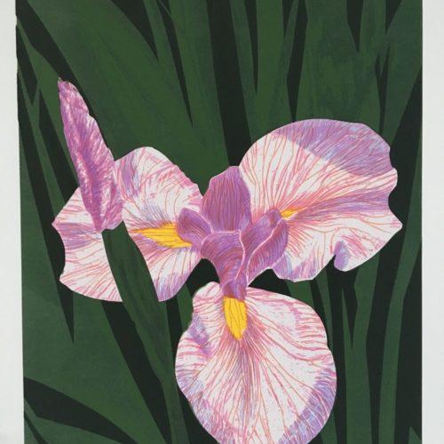 """James Gorman """"golden gate park iris,"""" silk screen, 14""""x20"""""""