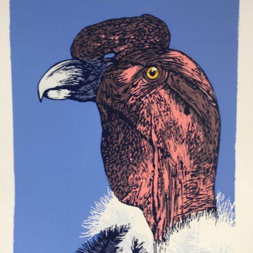 """James Gorman """"andean condor (zoo),"""" silk screen, 12""""x15"""""""