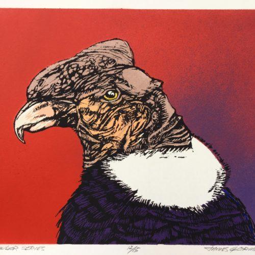 """James Gorman """"andean condor (red),"""" silk screen, 11""""x15"""""""