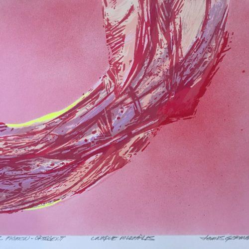 "James Gorman ""botanical fiction (crescent magenta),"" silk screen, 12""x15"""