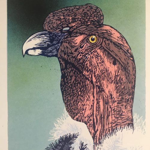 """James Gorman """"andean condor (zoo green),"""" silk screen, 12""""x15"""""""