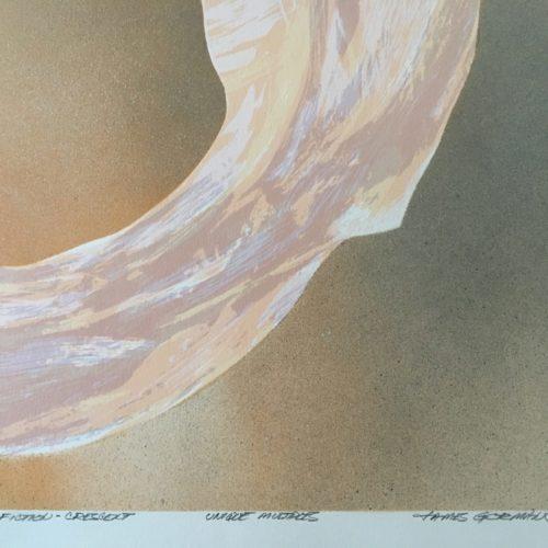 """James Gorman """"botanical fiction (crescent light),"""" silk screen, 12""""x15"""""""