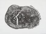 boundary oak 7 website