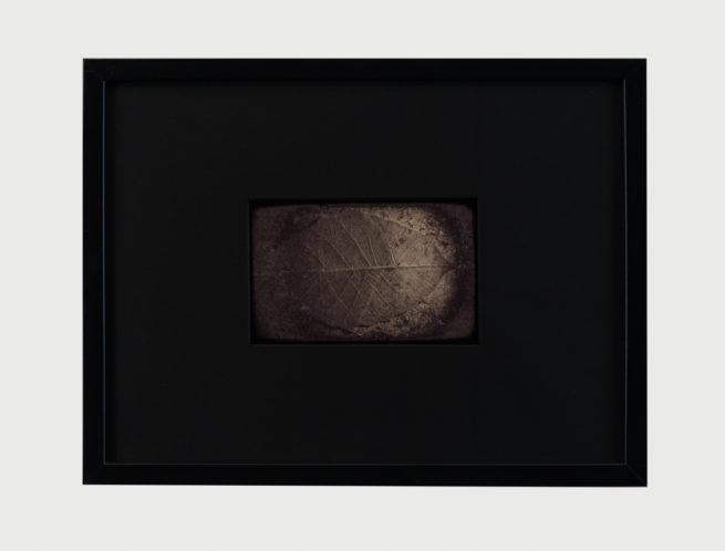 String of Life I, framed